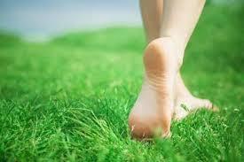 blote voeten in gras
